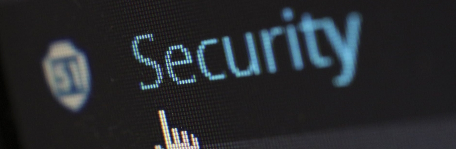 Internet Security Consulting Cover Image