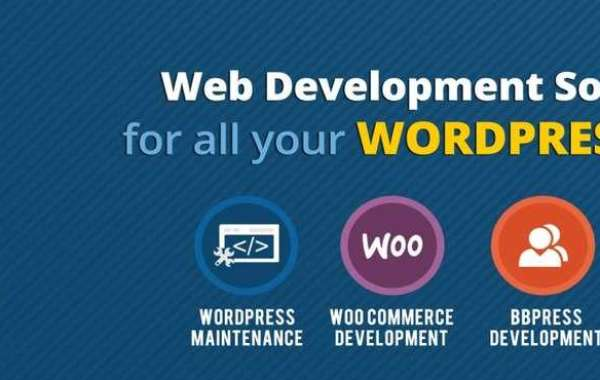 Everything You Need To Know About Wordpress Development Services