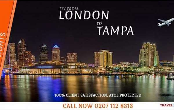 Special offers on London to Tampa Direct Flights at Traveldecorum