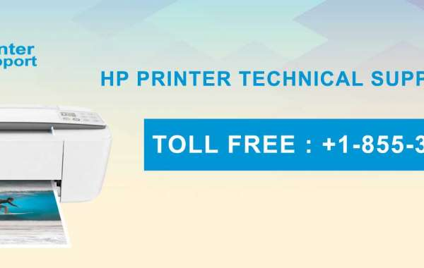 HP Printer Support Phone Number +1-855-381-2666