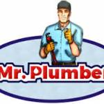 MR.Plumber Phoenix Profile Picture
