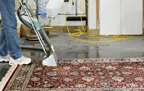 Benefits You Can Get With a Professional Carpet Cleaning Service