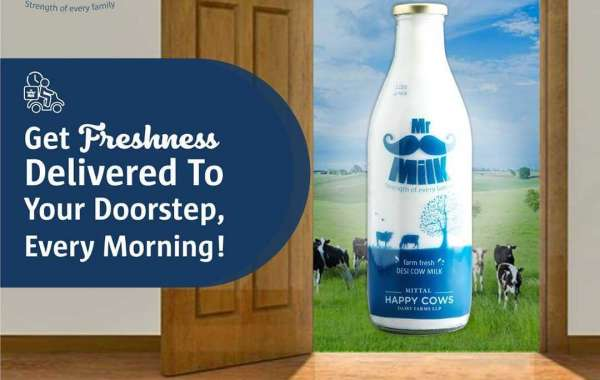 Choose The Best Online Milk Delivery Services in Pune