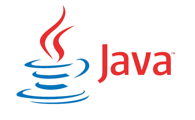 The Java Story In December 1995 the Java Beta 2 version was released