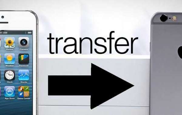How to Transfer Data From iPhone to iPhone?