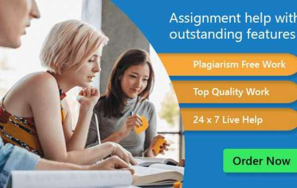 Premium Assignment Help With Best Online Writing Service