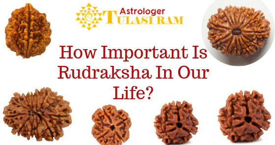 HOW IMPORTANT IS RUDRAKSHA IN OUR LIFE?