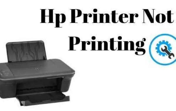 How to Fix Hp Printer not Printing in Simple Steps