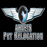 AirVets Pet Relocation Profile Picture
