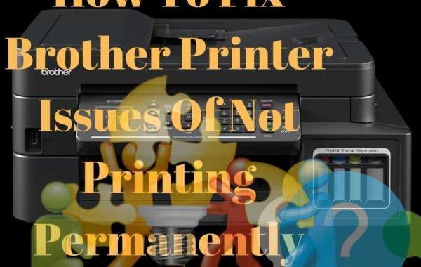 What Are The Steps To Fix Brother Printer Not Printing?
