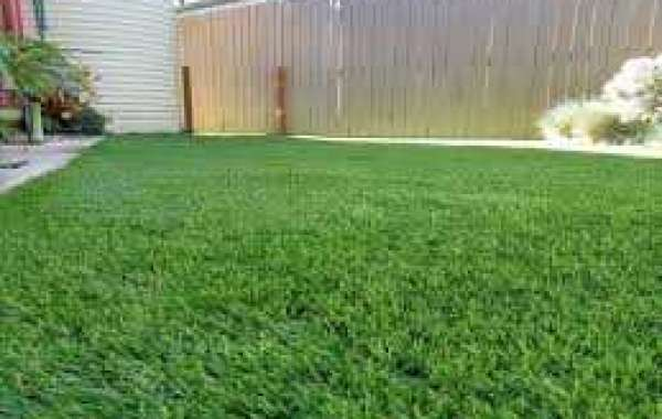 Use Synthetic Grass Canberra to Make Your Home Look Green & Good
