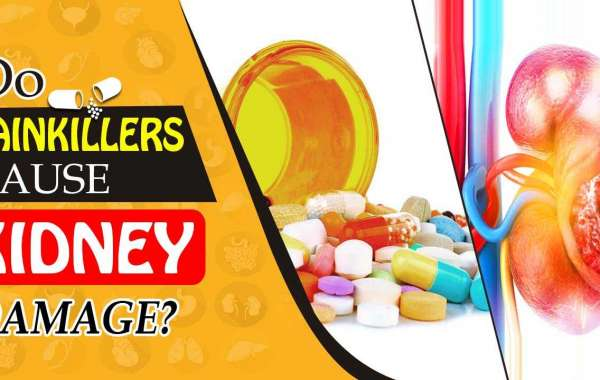 How Painkillers Damage Your Kidneys | English | Ayurveda Kidney Experience