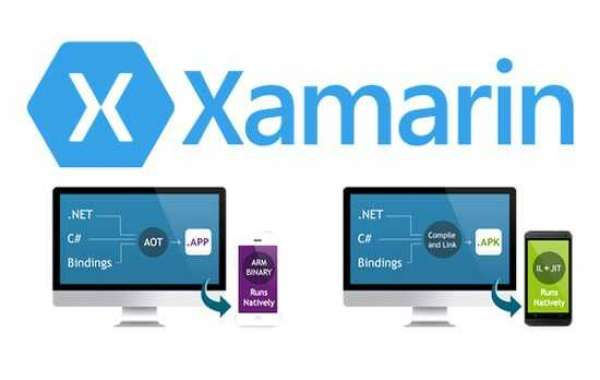 Xamarin Consulting Services