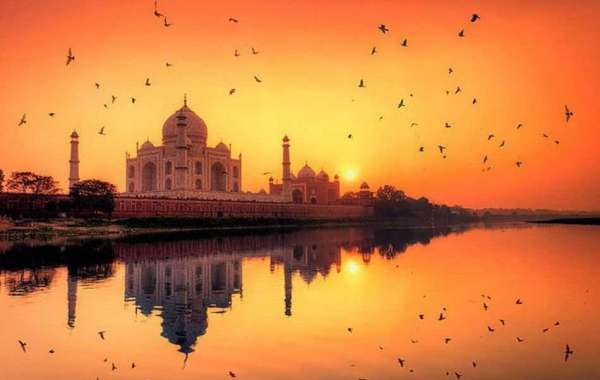 Experience The Golden Triangle Tour With Treasure Trip India