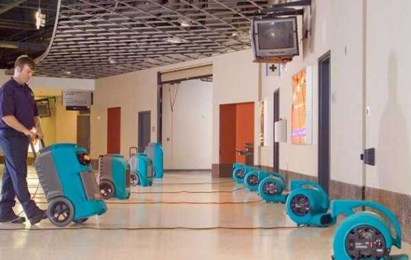 What are the Characteristics of a Professional Water Damage Restoration?