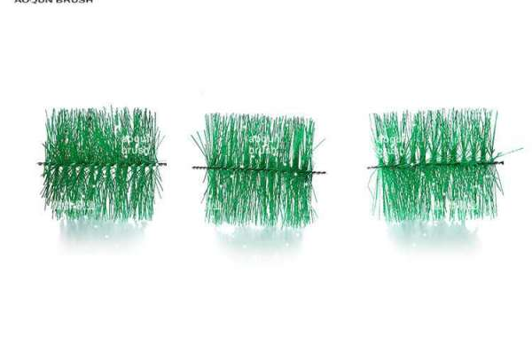 How To Clean Pond Filter Brushes?