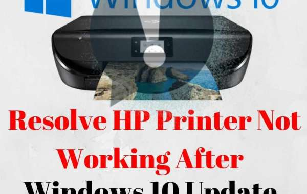 What To Do When HP Printer Not Working After Windows 10 Update