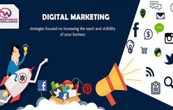 Gain an edge over your competitors with the best digital marketing company in Noida