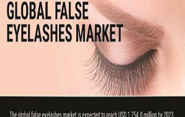 False Eyelashes Industry Demands and Growth Prediction Survey 2020 To 2024