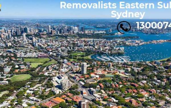 Best Removalists Northern Beaches service at budget needs