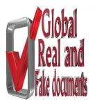 Global Real and Fake Documents Profile Picture
