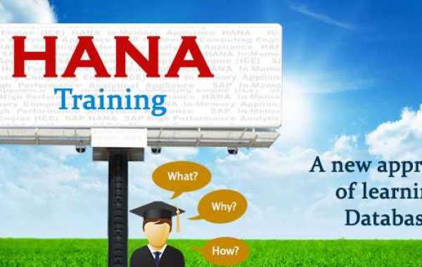 Hana Sap Is Creating A Revolution For Your Business To Fulfill The Business Aims
