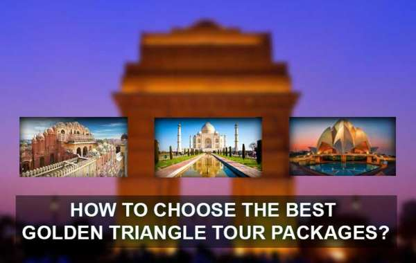 How to choose the best Golden Triangle Tour Packages?