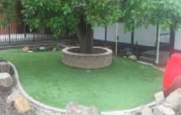 6 Reasons to Have Artificial Lawn Canberra in Your Home's Backward & Frontward