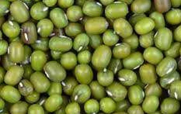 Buy Green Mung Beans Online To Prepare Soups, Desserts and Sprouts