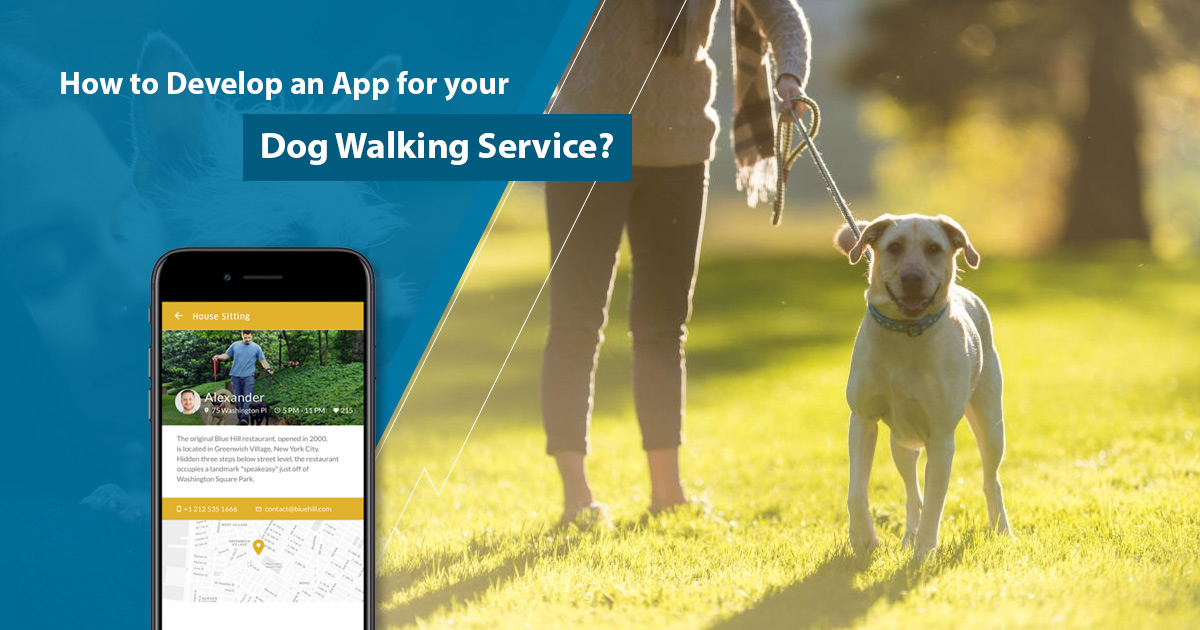 How to develop an app for your dog walking service?