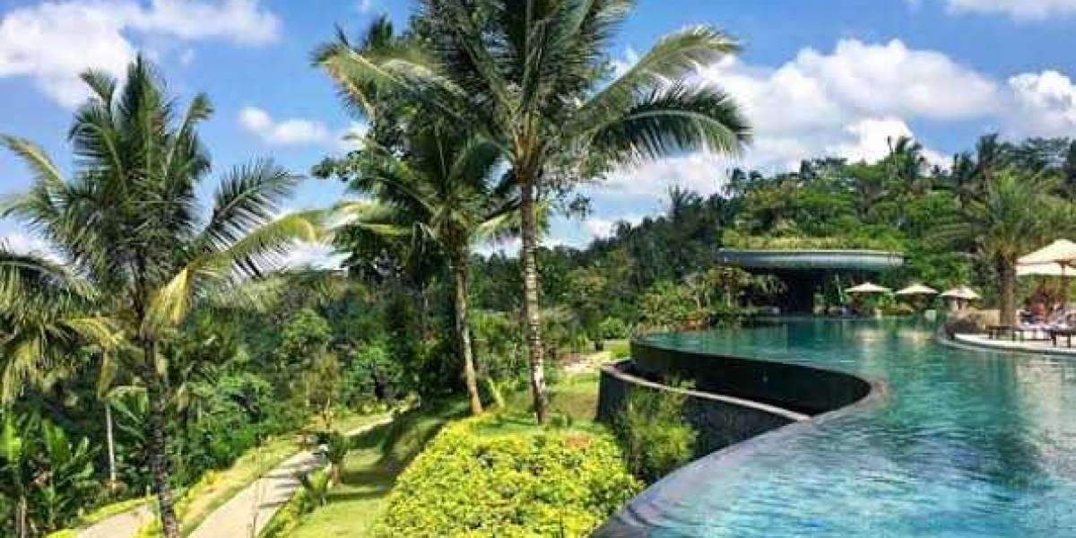 7 Best Places to visit in Ubud