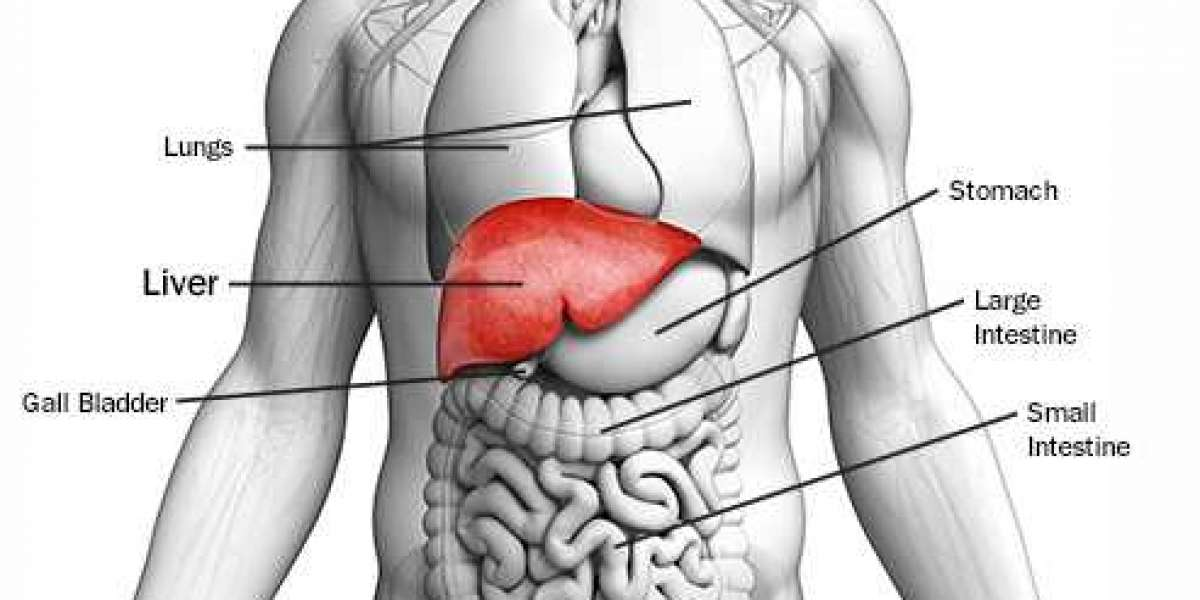 8 Silent Signs of Liver Cancer You Shouldn't Ignore