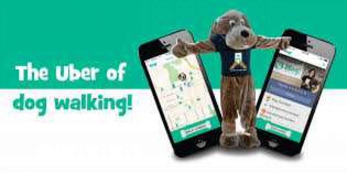 Featured insights into the Dog Walking App for your startup