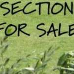 sections for sale Profile Picture