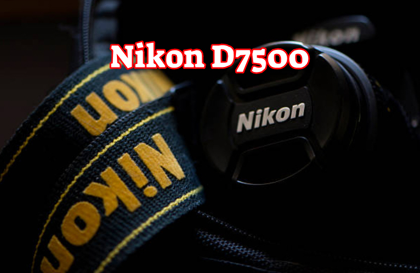A List of Best Nikon DSLR Reviews That You Should Read Before You Buy - BloggerAli | Technology Blog - Best Tech Blog Site