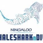 Whaleshark Tours Profile Picture