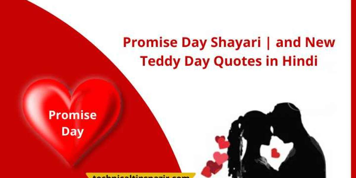 Promise Day Shayari 2020 | and New Teddy Day Quotes in Hindi