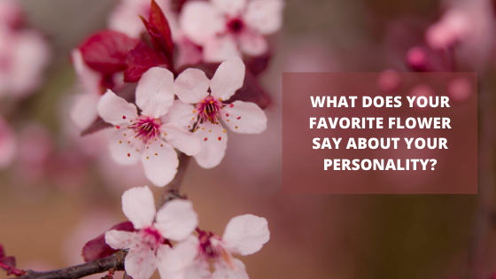 What does your favorite flower say about your personality? » Dailygram ... The Business Network