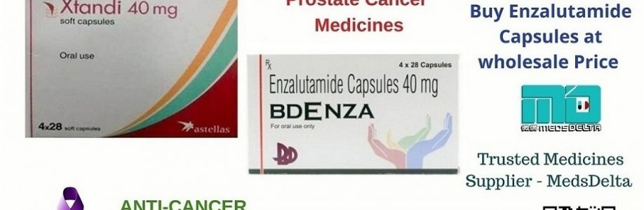 Bdenza 40mg Capsules Online | Xtandi 40mg Price in India | Indian Enzalutamide Capsules Cover Image