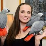 Ana's Parrots and Supplies Profile Picture