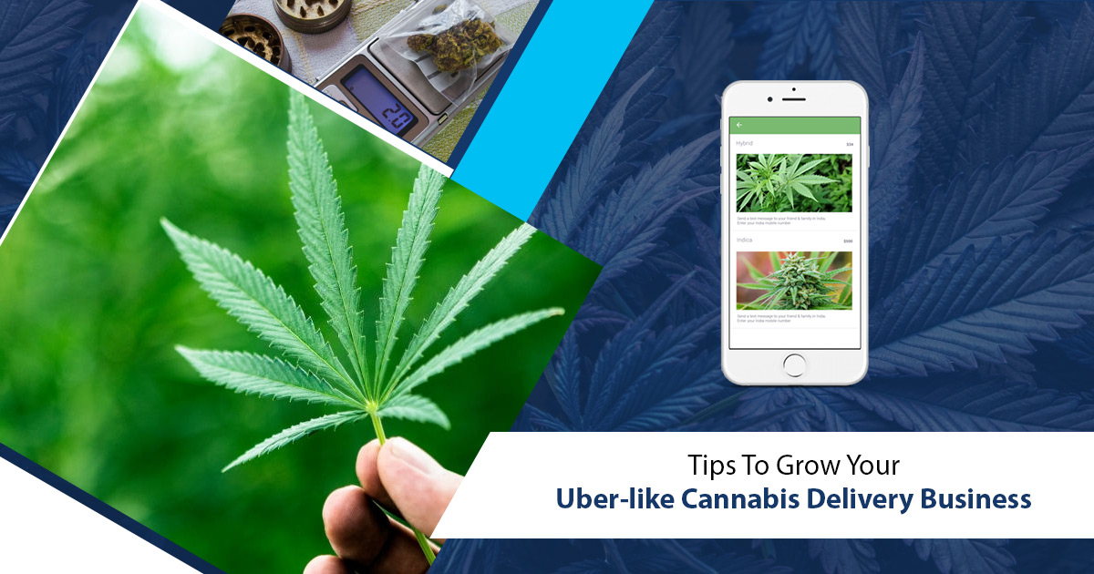 Appdupe Reviews  – Tips To Grow Your Uber-like Cannabis Delivery Business – appdupereview.com