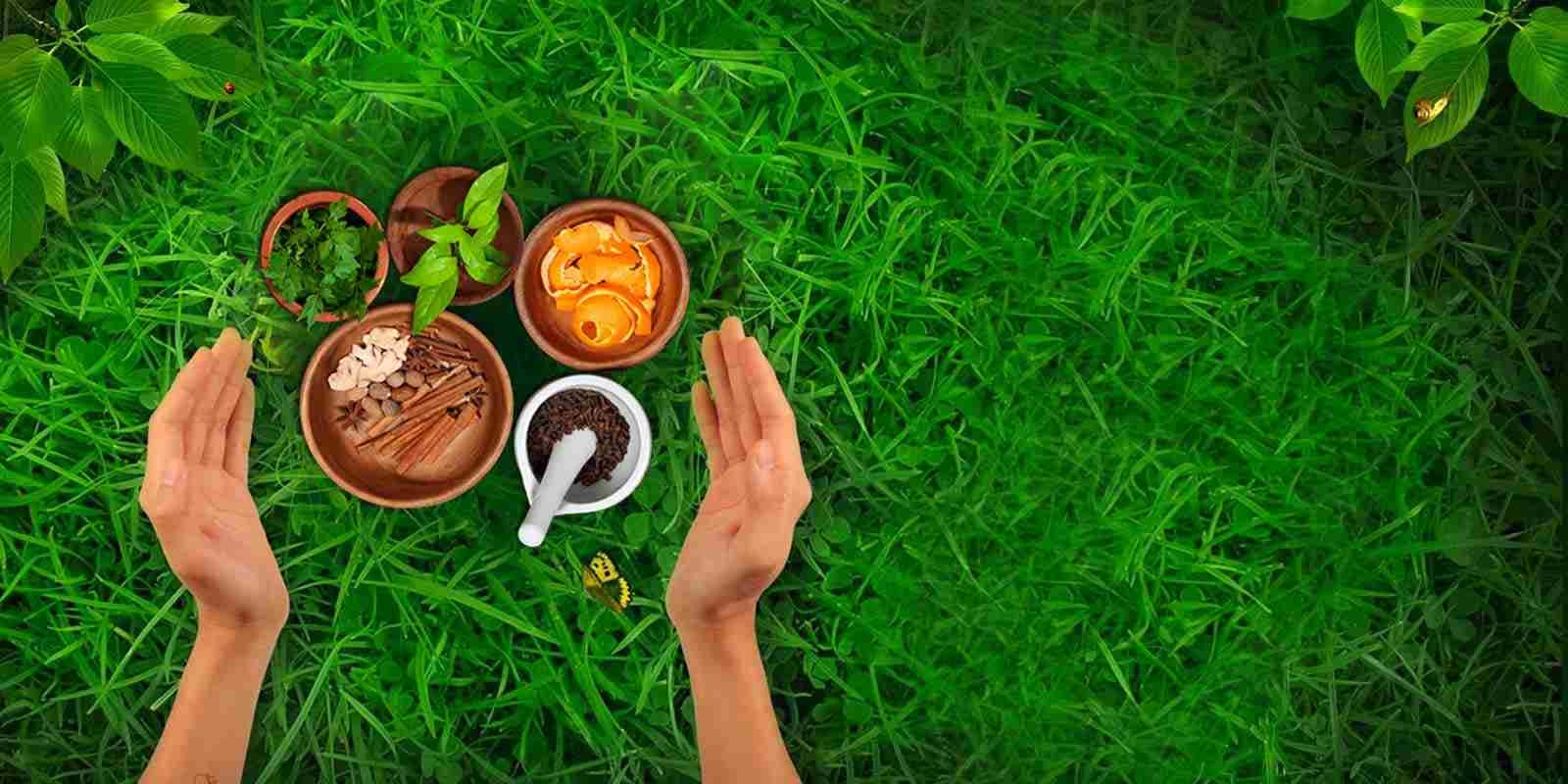 Scope of Ayurveda Training in India