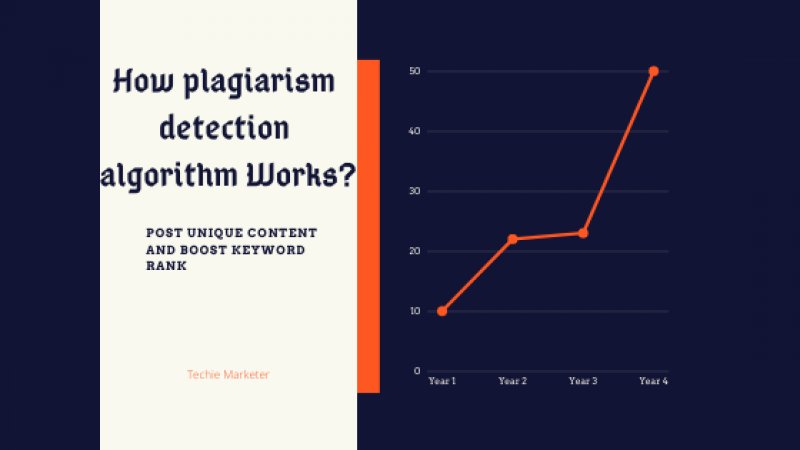 Plagiarism Detection Algorithm and How You Avoid?