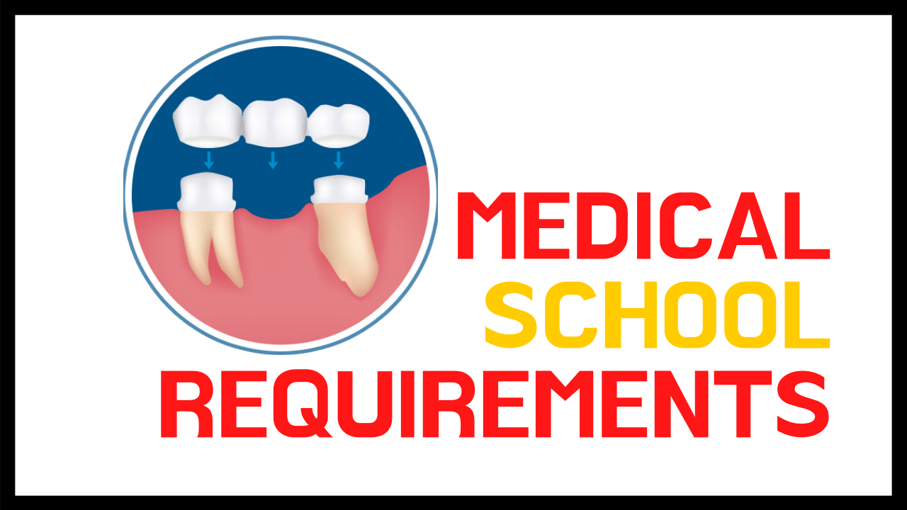 Medical School Requirements (Complete Guide) - Study Profits