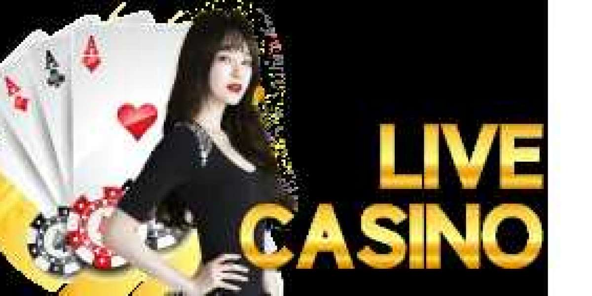 Get the Most Authentic Casino Experience at Ecwon