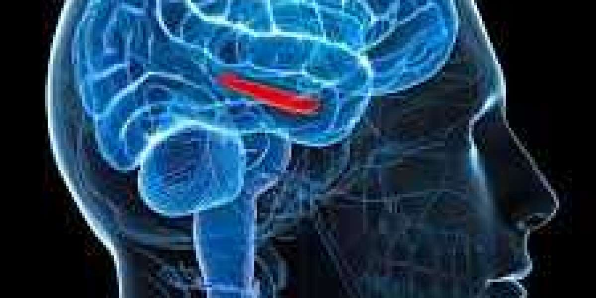 Instant Boost Brain:-Avoid short term memory and leads to lasting energy