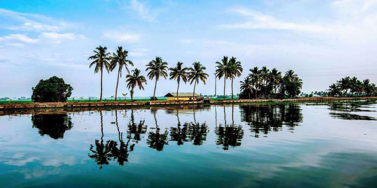 3 Museums in Alappuzha That You Should Visit While Vacationing in Kerala