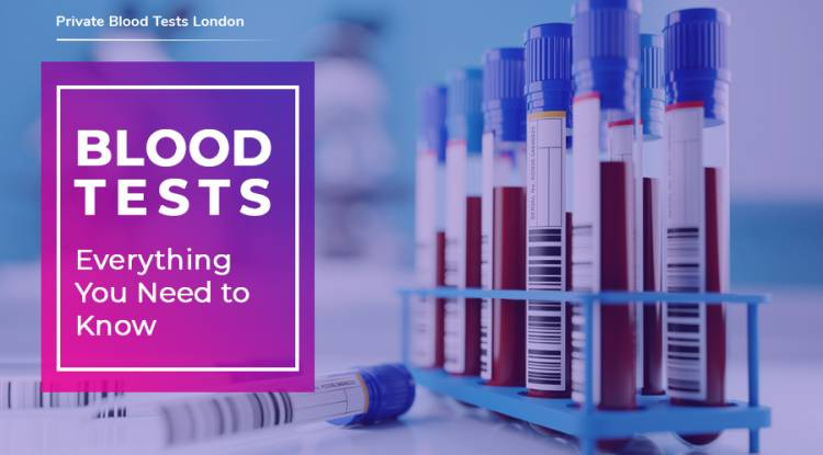 Blood tests: everything you need to know  - Author Bench