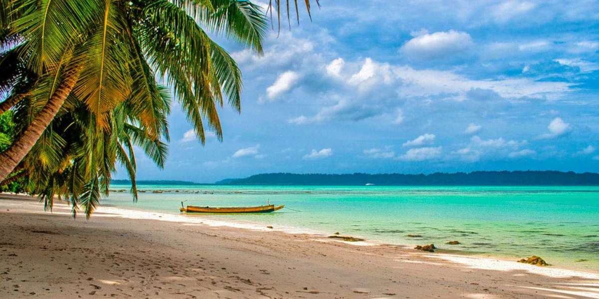 What Makes North Bay Different From All Other Islands in Andaman?