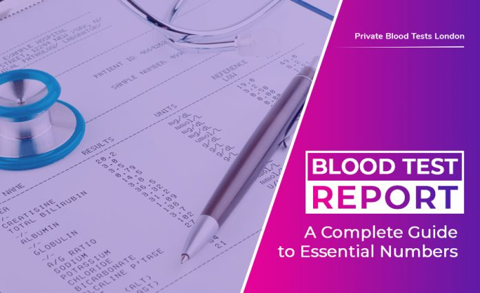 Blood Test Report: A Complete Guide to Essential Numbers | Maieuta Pedia